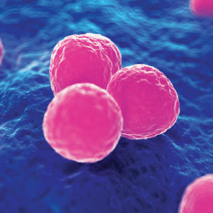 Cleaning systems can reduce MRSA's disease after clinics, study studies