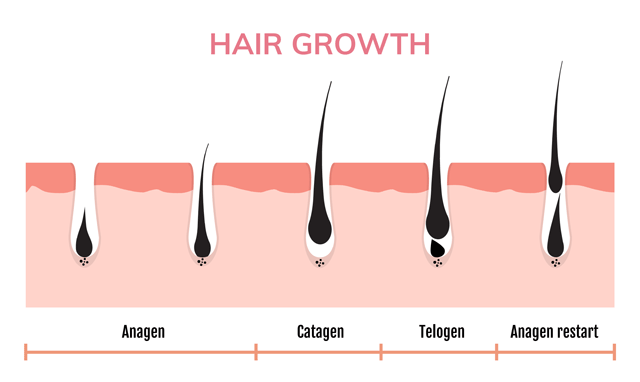 Why do I leave Hair on my diet?